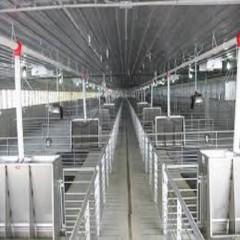 Higiene d'instal·lacions i màquines (0)